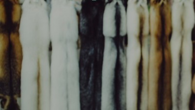 Fur | Finnish fur is the go-to garment